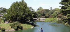 Visiter le Japon, 3 activités culturelles immanquables