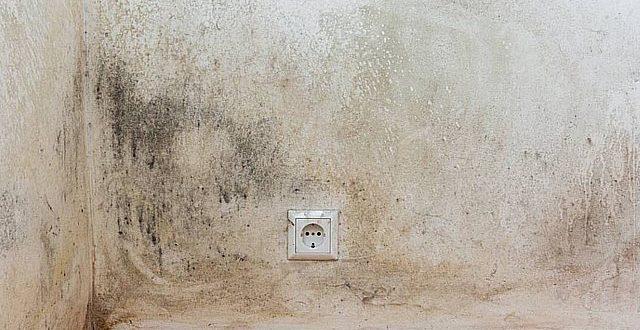 HUMIHOUSE : traitement de l'humidité et système de ventilation